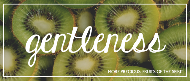 """Image result for THE FRUIT OF GENTLENESS"""""""