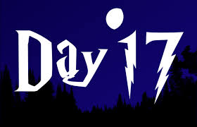 17 DAY 2020