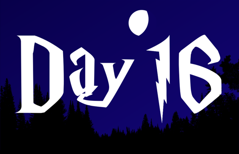 16 DAY 2020