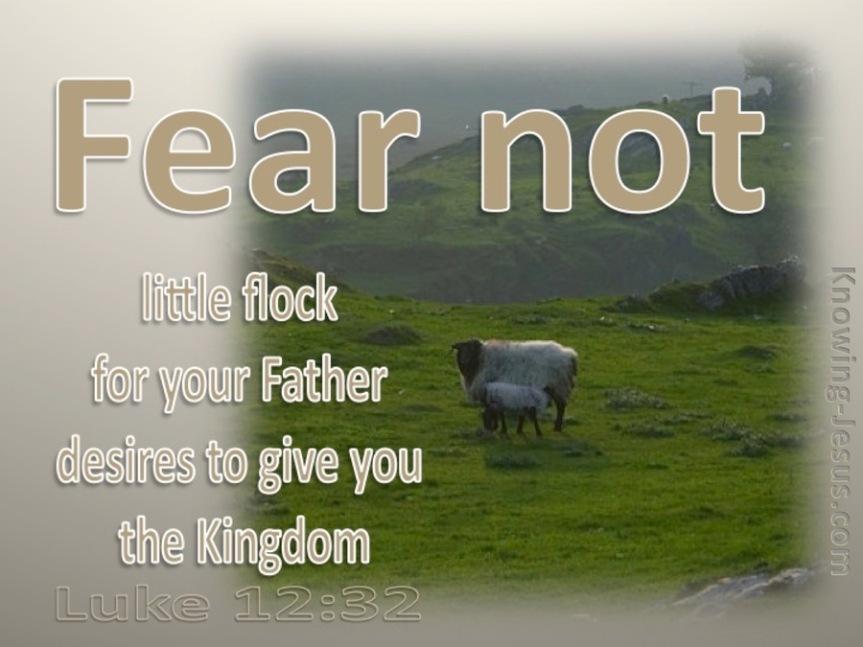 FEAR NOT LITTLEFLOCK
