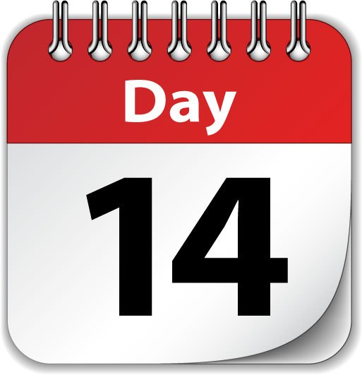 14 DAY 2020